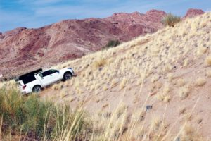 The writer's first attempt at scrambling up a 45° dune was unsuccessful; but he got there eventually!
