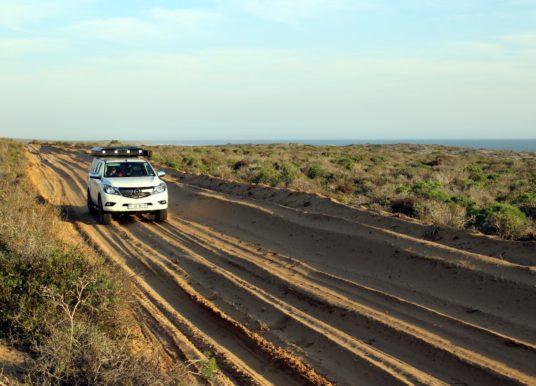 Caracal 4x4 track