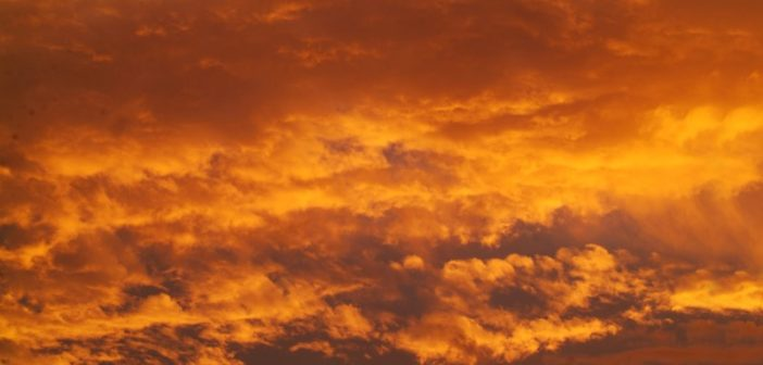 1. Red sky at night, shepherds delight; red sky in the morning shepherds warning