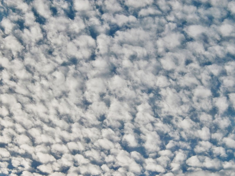 3.Small cirrocumulus clouds will eventually disperse to leave clear skies and a bright day