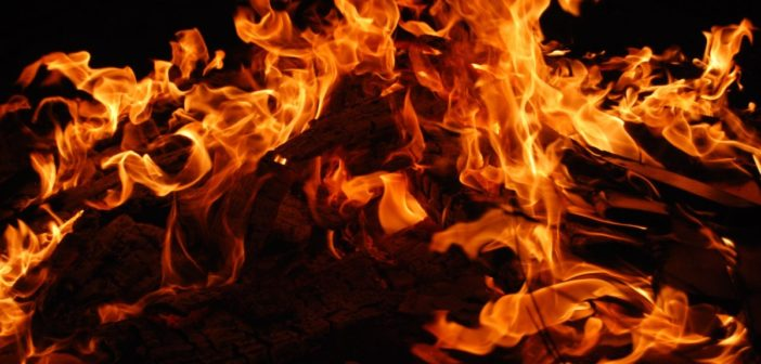 Bush Craft: Light my fire