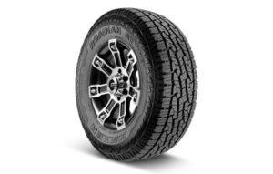 Nexen Roadian AT Pro tyres