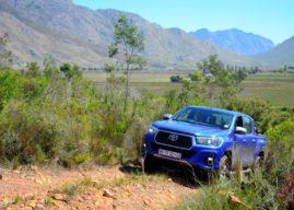 Trail Review: Sneeukop, WC