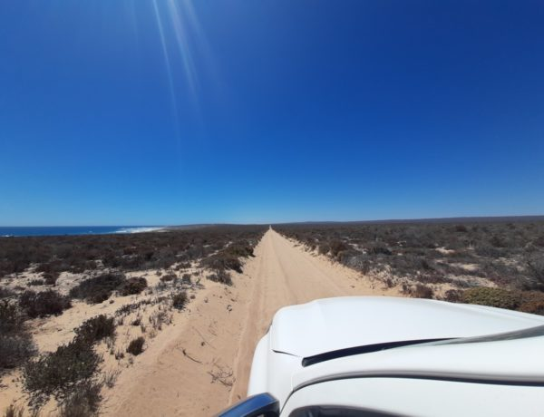 A Boys weekend in Namaqua National Park – Reader story